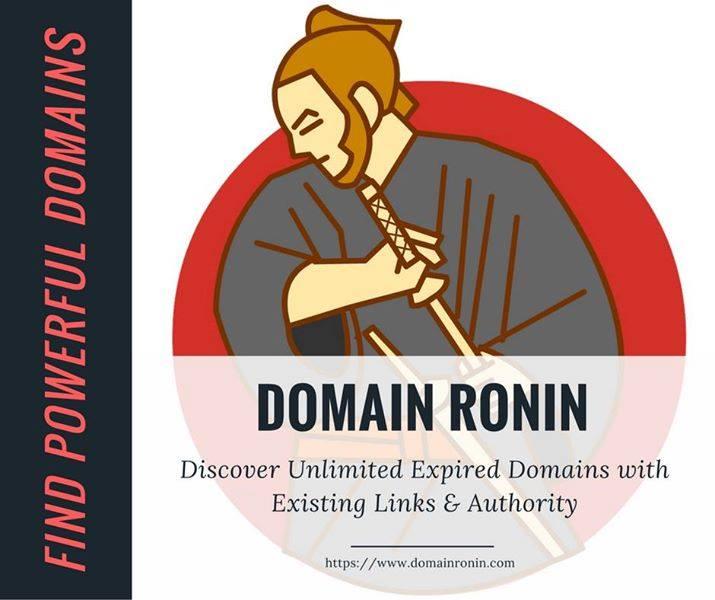 Domain-ronin